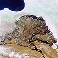 This Envisat image shows Russia's Lena River, Lena River Delta and the Laptev Sea. Envisat's Medium Resolution Imaging Spectrometer (MERIS) instrument acquired it on 15 June 2006 working in Full Resolution mode, to provide a spatial resolution of 300 metres. The image has a width of 350 kilometres.