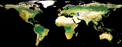 ESA's global land cover map