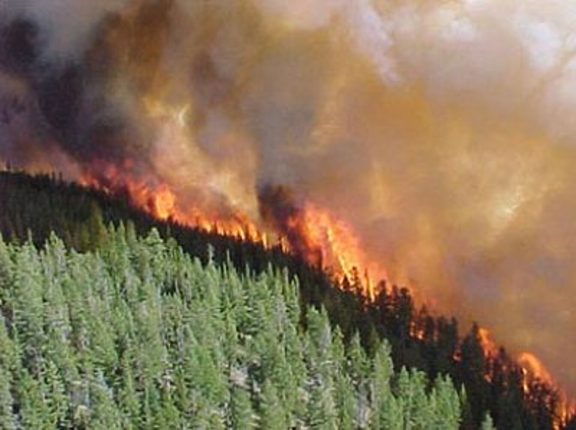 Cool Creek fire at its height due to strong winds