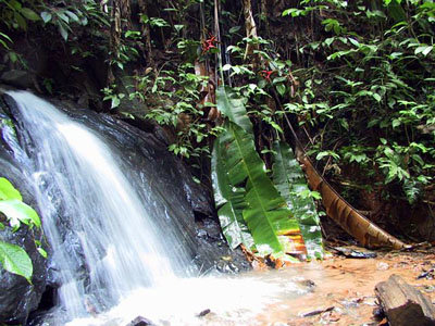 One of the many cascades in French Guiana