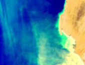 Mauritanian Upwelling - MERIS - 22 March 2002