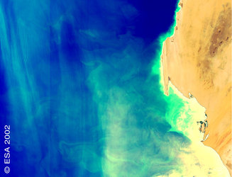 Upwelling near the coast of Mauritania taken with the MERIS instrument on board Envisat