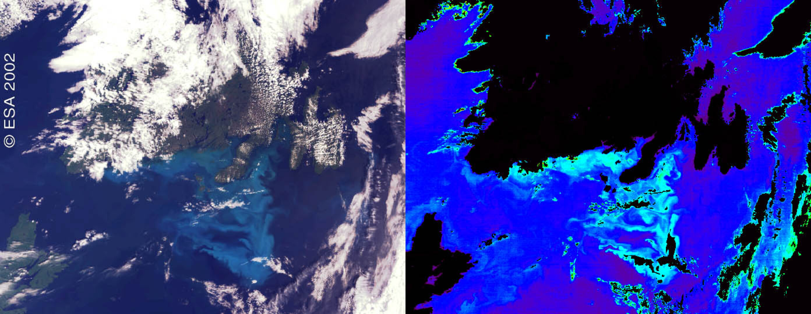 Two contrasting views of the Canadian phytoplankton bloom