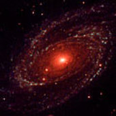 XMM-Newton's Optical Monitor ultraviolet image of galaxy M81