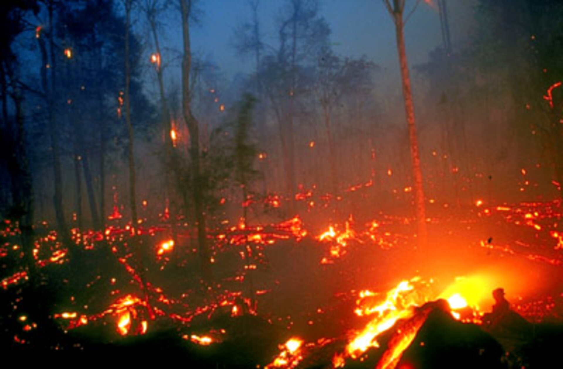 Burning peat swamps in Kalimantan, Borneo