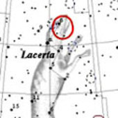 Constellation of Lacerta