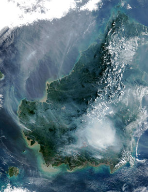 Burning peat swamp fire in Borneo
