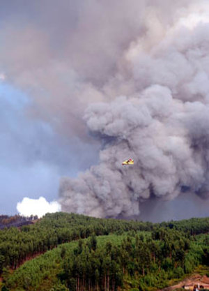 Fire rages in central Portugal