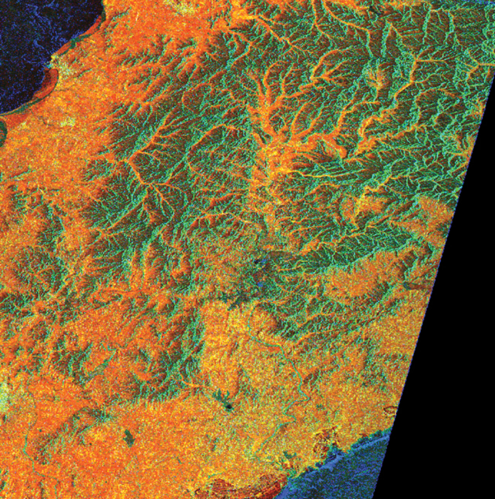 Radar-based map of Chinese forested areas