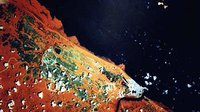 Satellite image of Kourou