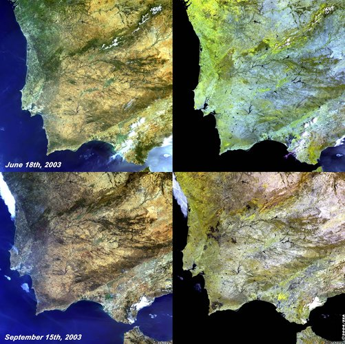 Algarve Fires - MERIS, 18 June and 15 September 2003
