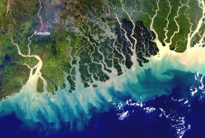 Space in Images  2004  05  MERIS image of the Ganges delta