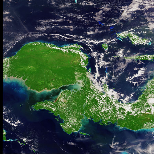 Indonesia Papua - MERIS - 20 March 2004