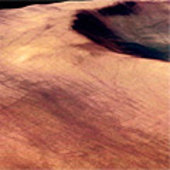 Martian crater and dust devil tracks