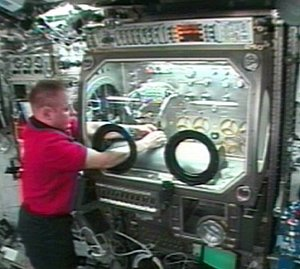 Setting up HEAT in the Microgravity Science Glovebox