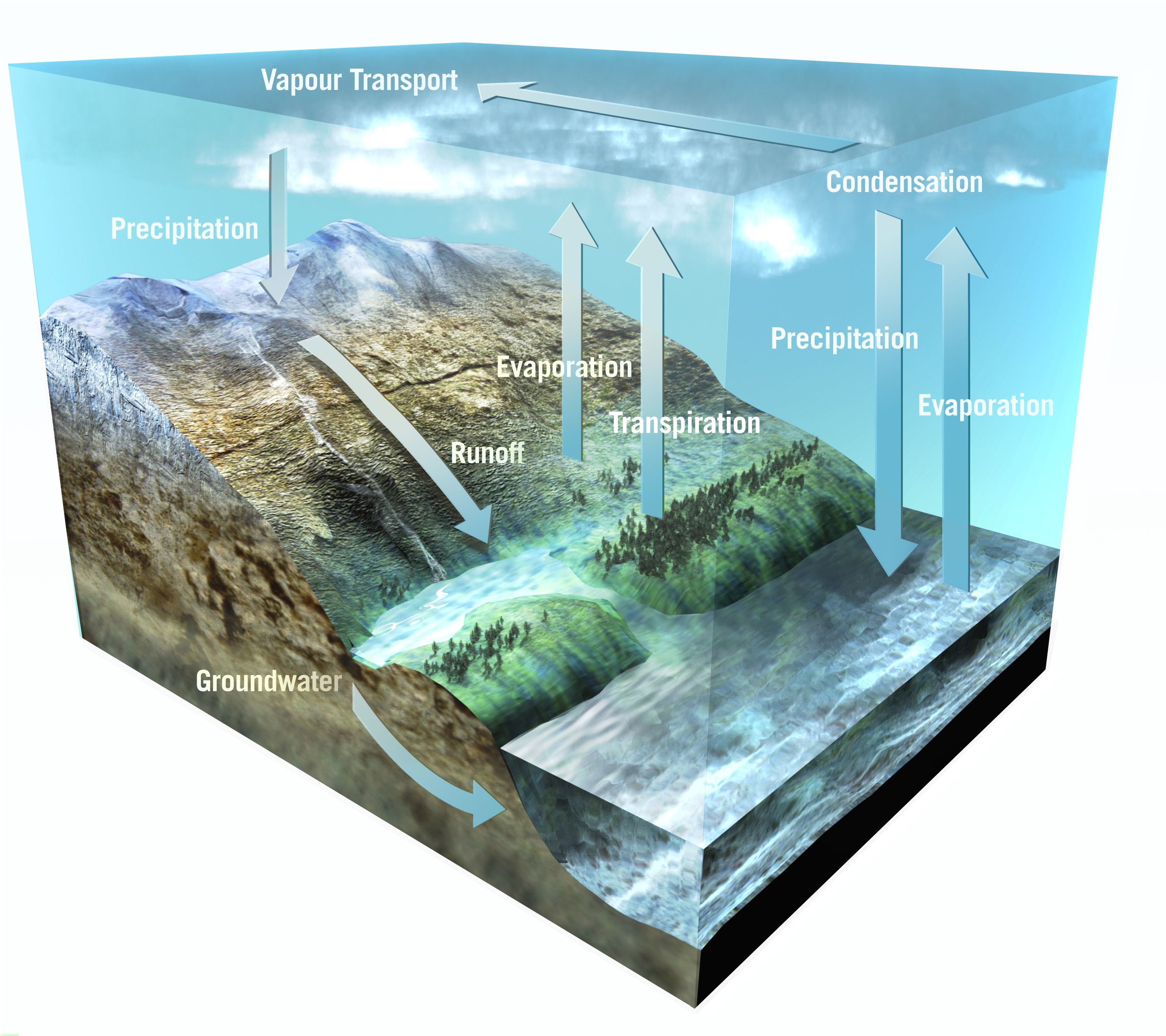 Space in images 2004 09 the earths water cycle the earths water cycle 269 mb publicscrutiny Choice Image