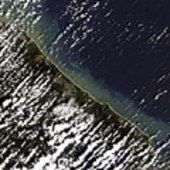 MERIS image showing northeast coast of Sri Lanka