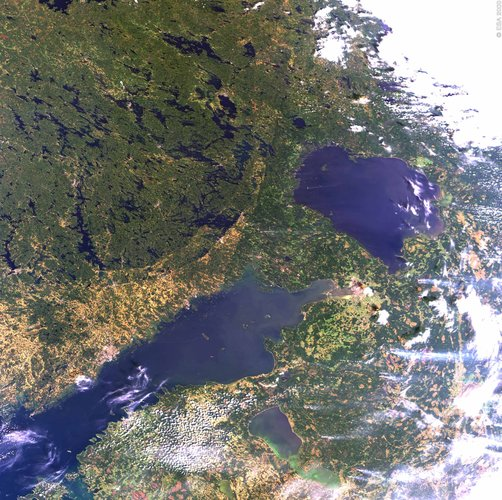 St. Petersburg and Lake Ladoga seen by Envisat's MERIS