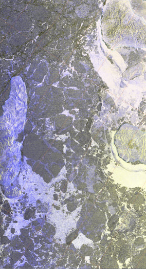 Envisat ice imagery