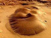 Martian soil detox could lead to new medicines