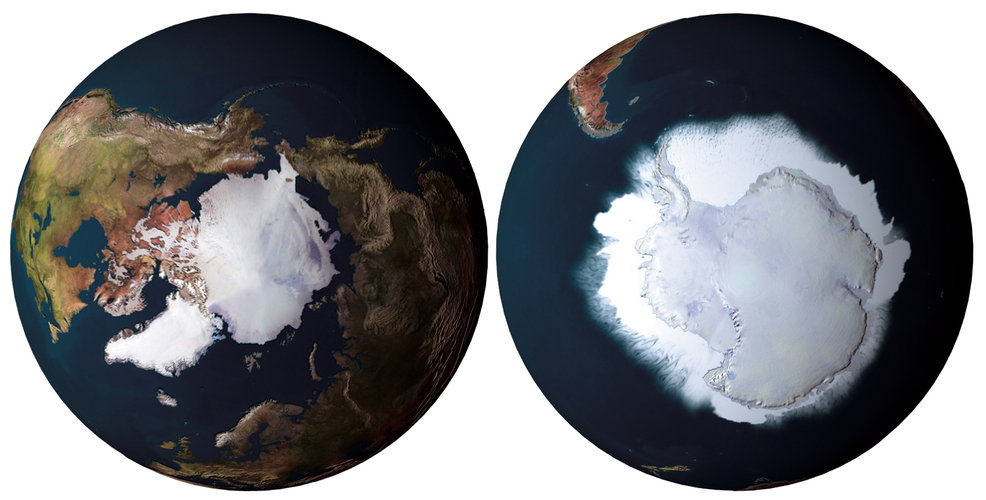Polar ice cover