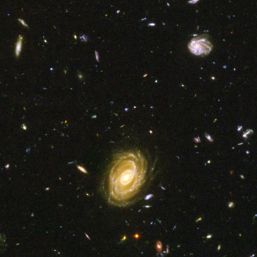 Hubble's ACS close-up view of Hubble Ultra Deep Field