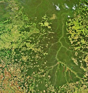 The Xingu River in Brazil captured by Envisat