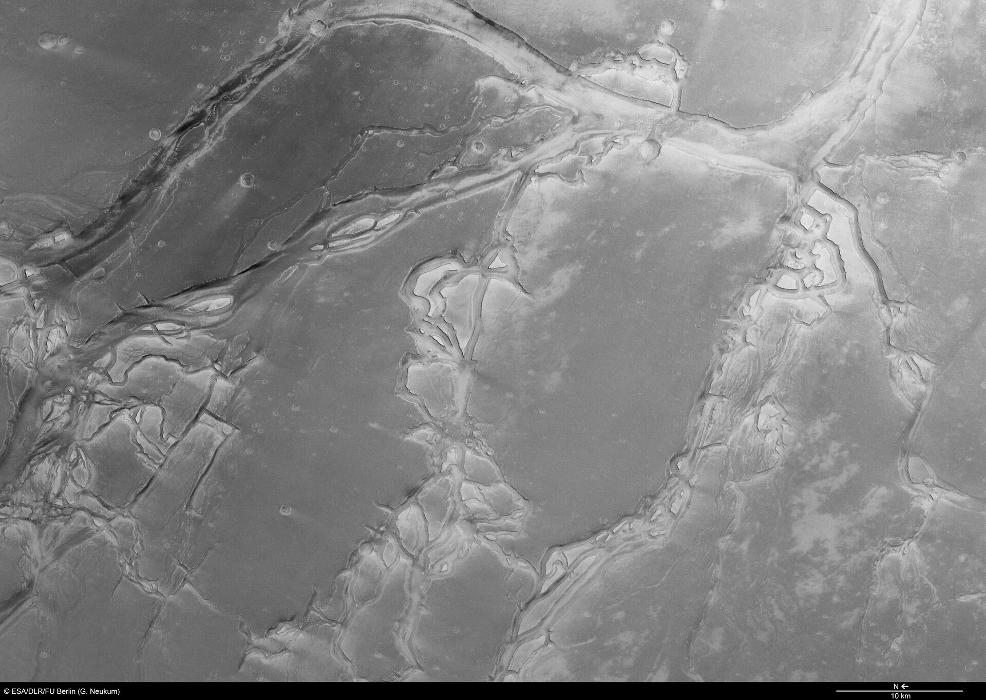 Granicus Valles and Tinjar Valles, black and white (North to the left)
