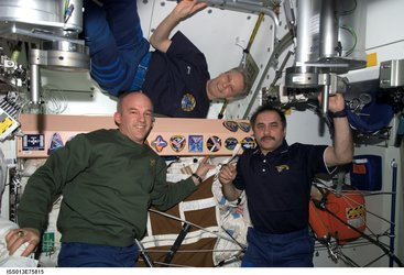 Collection of insignias onboard the ISS