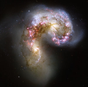 Hubble's view of the Antennae galaxies