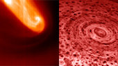 Polar vortices at Venus and Saturn compared