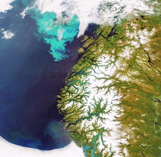 Plankton bloom off the coast of Norway