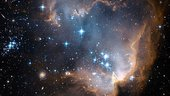 Hubble's view of N90 star-forming region