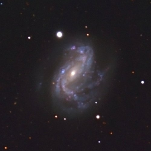 An optical image of NGC 4051