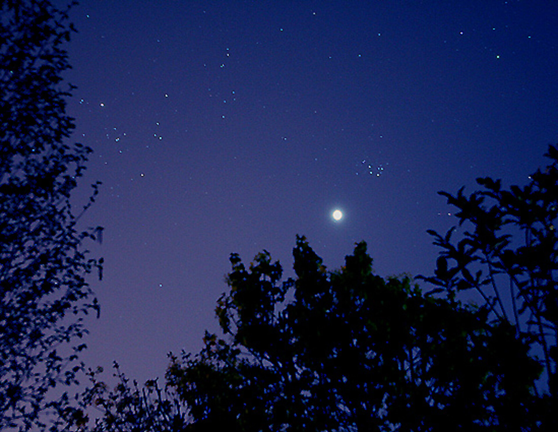 Venus and the constellation Pleiades side-by-side