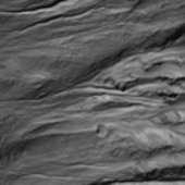 Braided gullies Mars