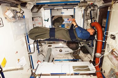 Nespoli inside sleeping bag in Harmony
