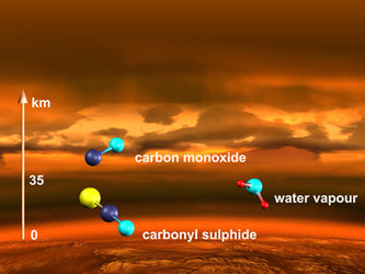 Molecules in the Venusian atmosphere