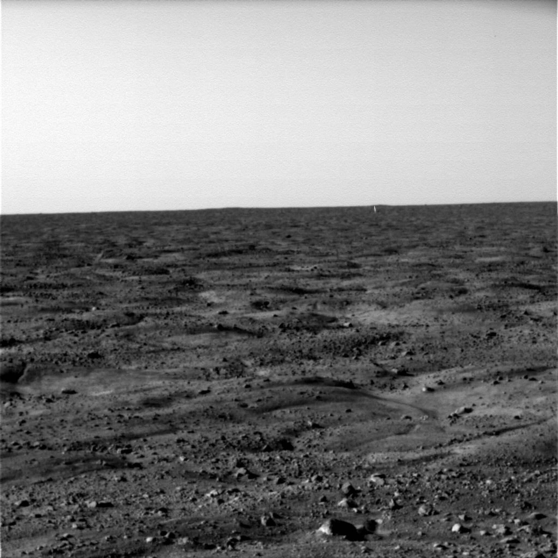 The martian surface, seen by Phoenix