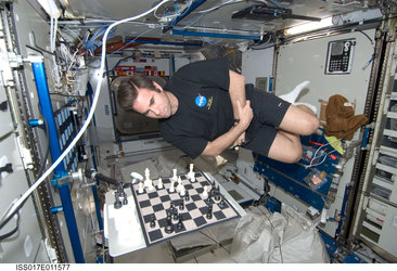 Expedition 17 crewmember Greg Chamitoff plays a game of chess in the Harmony (Node 2) module of the ISS
