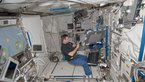 [10/15] NASA astronaut Gregory Chamitoff prepares the 3D Space experiment inside Columbus