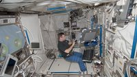 Chamitoff prepares 3D Space experiment inside Columbus