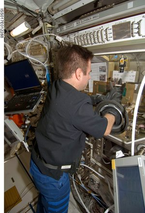 NASA astronaut Greg Chamitoff uses the Microgravity Science Glovebox inside the Columbus laboratory