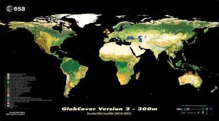 Envisat global land cover map