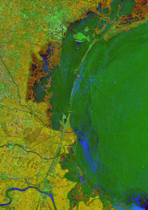 ERS-2/Envisat InSAR tandem interferogram showing Po river delta, Italy