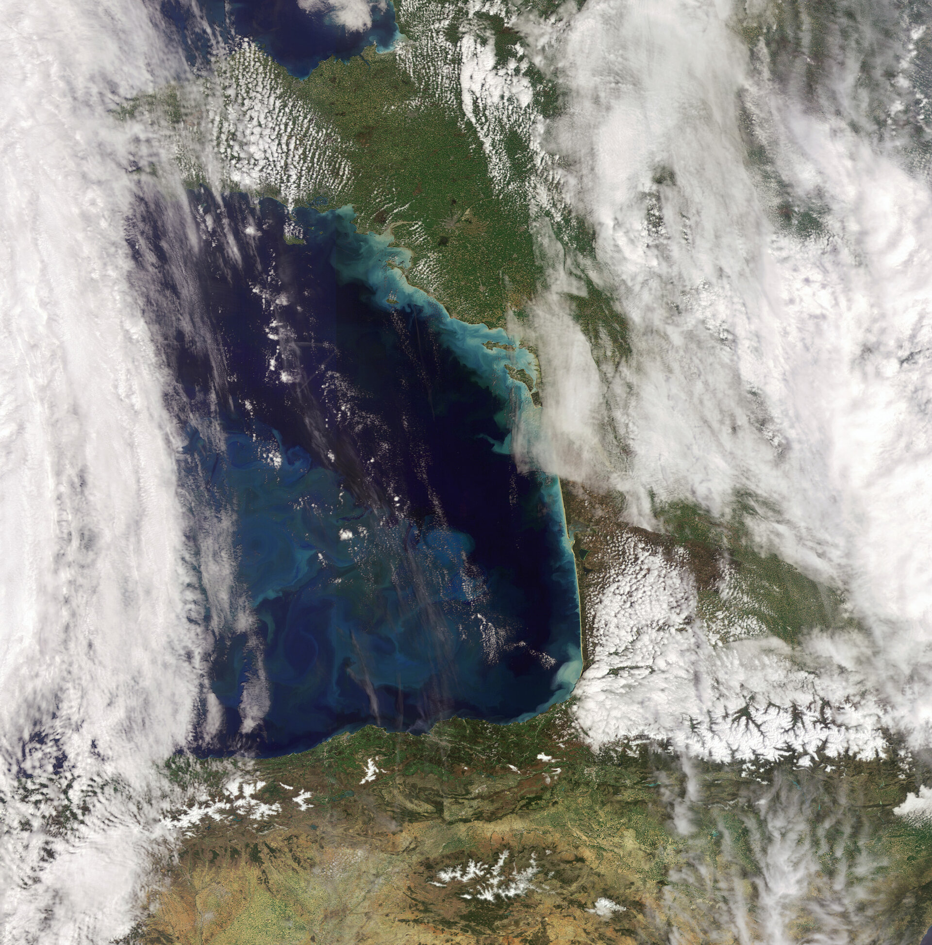 Phytoplankton bloom in the Bay of Biscay