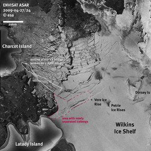 Wilkins Sound within Antarctica