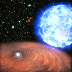The white dwarf and its companion