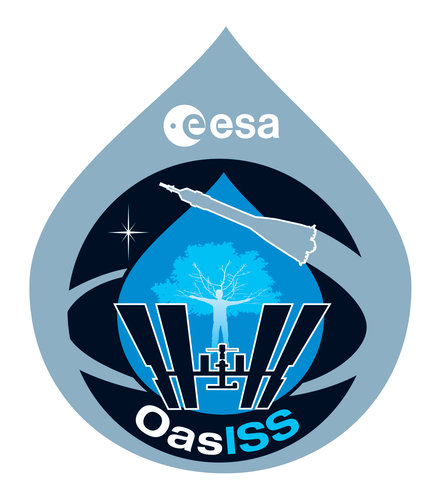 Soyuz TMA-15, OasISS mission patch, 2009