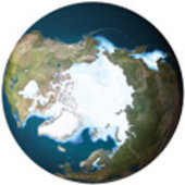 Arctic ice cover 1980 and 2007